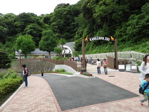 金沢自然公園 011
