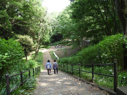 037東高根森林公園