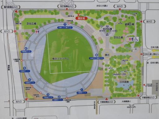 横浜公園 チューリップ 003