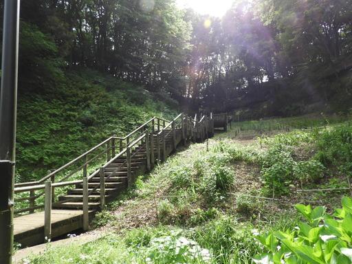 045東高根森林公園