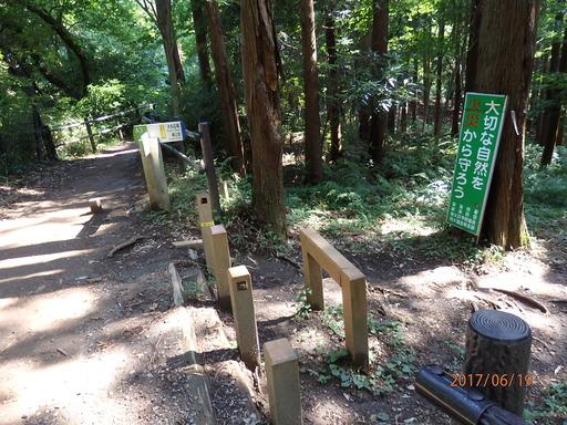 227瀬上の森標識