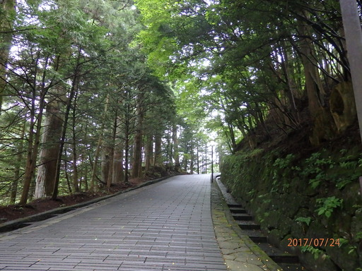日光東照宮 058表参道