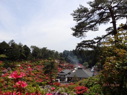 134 青梅塩船観音寺つつじ祭り