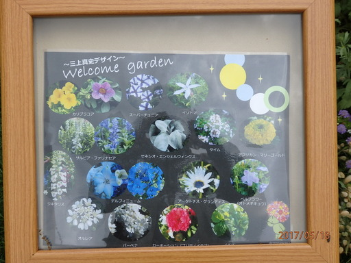 027Welcome garden