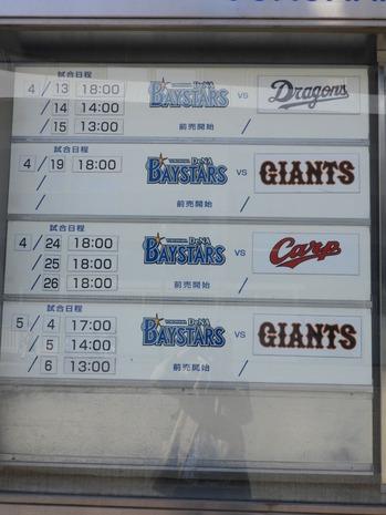 横浜公園 チューリップ 078