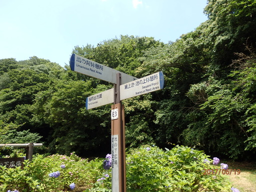 142瀬上の森標識