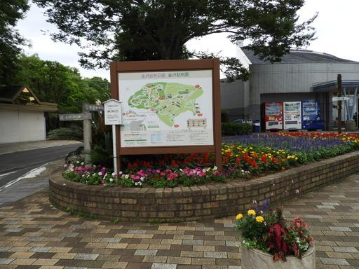 金沢自然公園 022