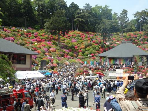 036青梅7塩船観音寺つつじ祭り