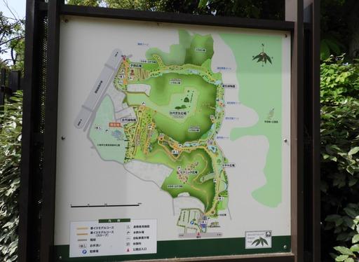 032東高根森林公園 地図