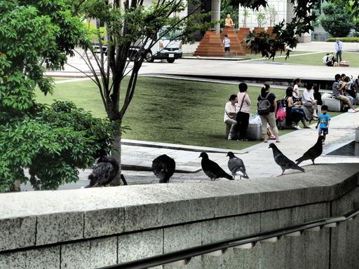 064横浜美術館