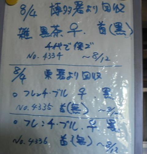 2011_08040066