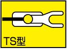 Type-TS