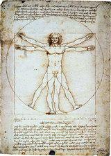 ウィトゥルウィス人体図.