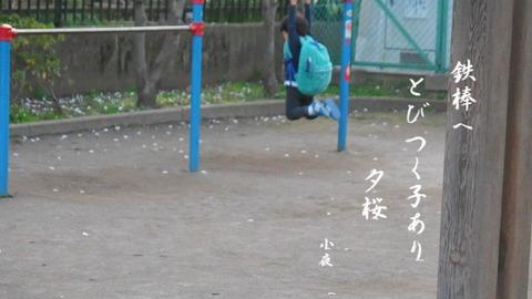 3cfbed68.jpg