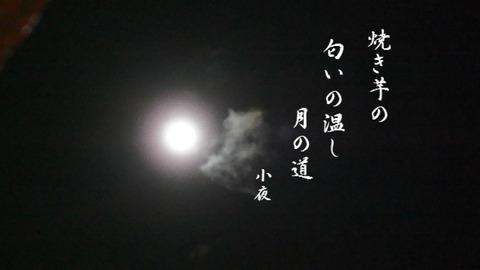 db0c092b.jpg