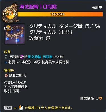 海賊腕輪10