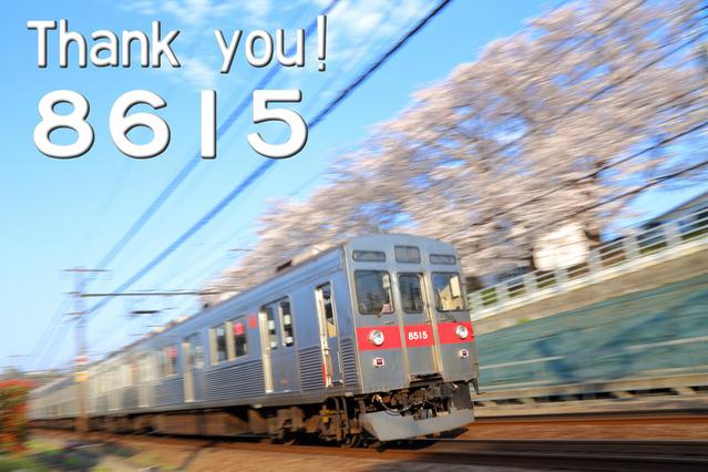 thankyou8615