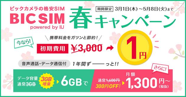 BIC SIM春キャンペーン