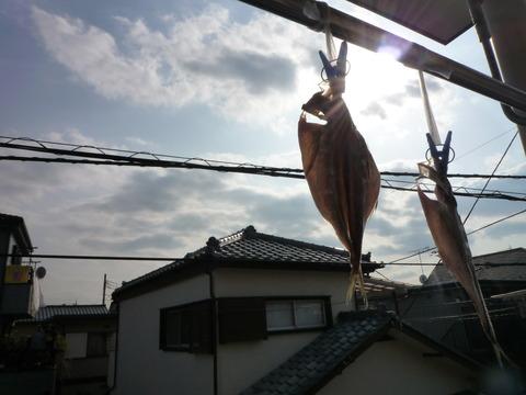 大阪風俗求人 30代ピンチ 干される