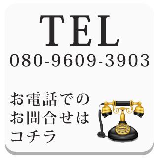 LP0_tel
