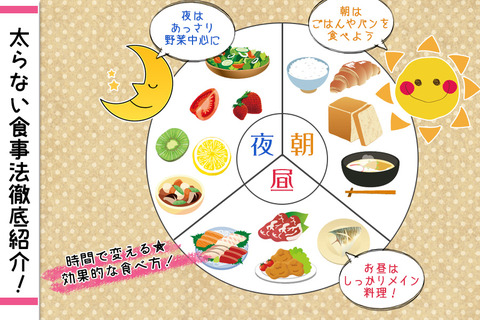 太らない食事法紹介『一日の食事バランスの説明』
