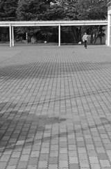 f5218992.jpg