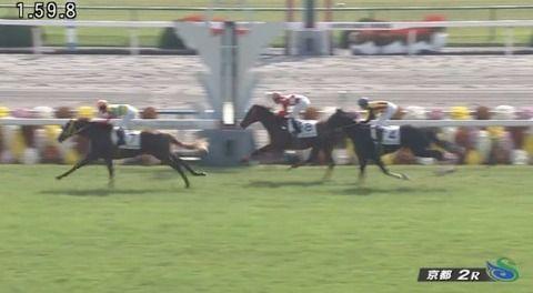 【競馬】菊花賞は3分切るか? 京都2Rで1分59秒8の2歳馬の日本レコード ハービンジャー産駒...