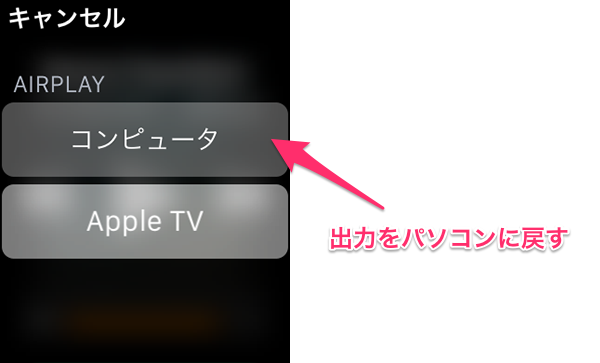 AppleWatchRemote11