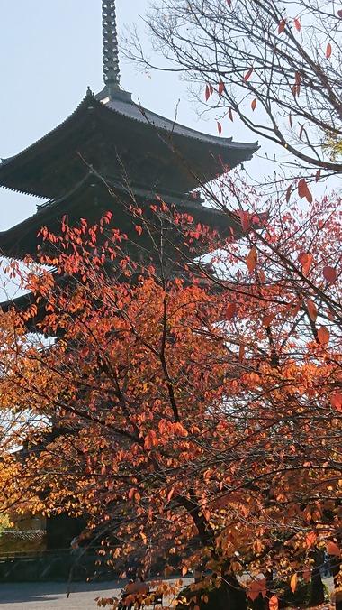 東寺5重の塔