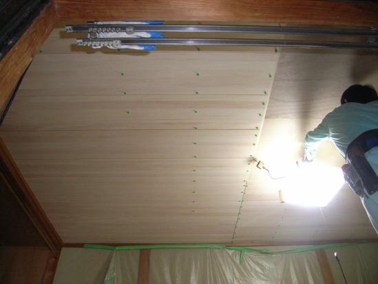 樅の木の天井