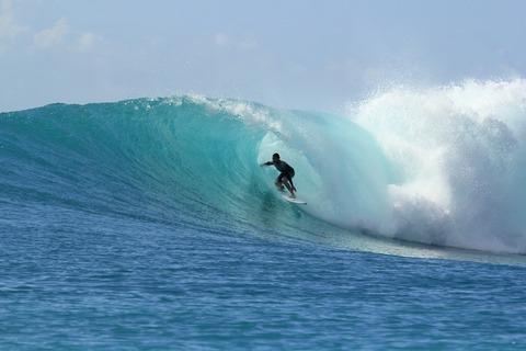 surfing-2686393_1920