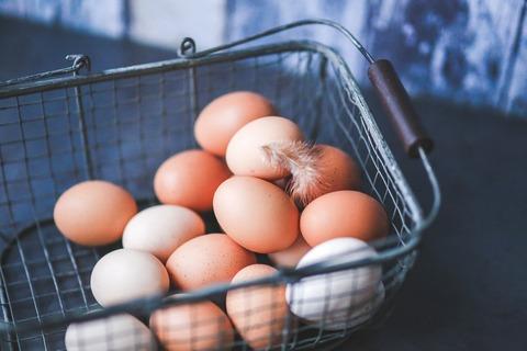 eggs-791463_1920