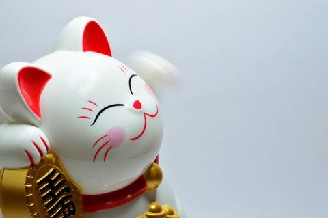 animal-art-asia-932261