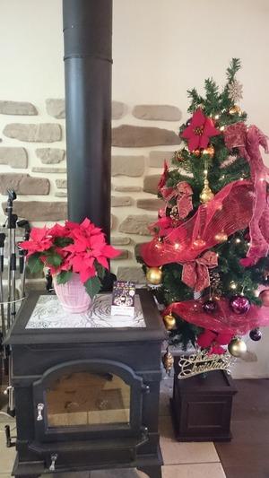 アダージョクリスマスツリ
