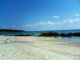 奄美の海岸�