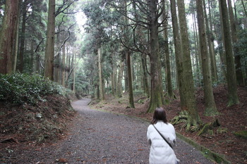 ある日、森の中♪
