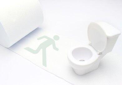 3トイレ (2)