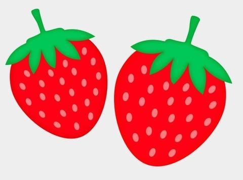 イチゴ (2)