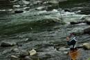 鮎の試し釣り。