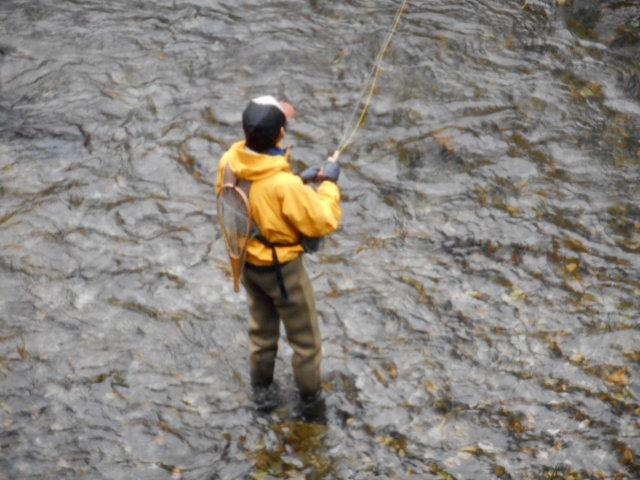 県駐前釣り人