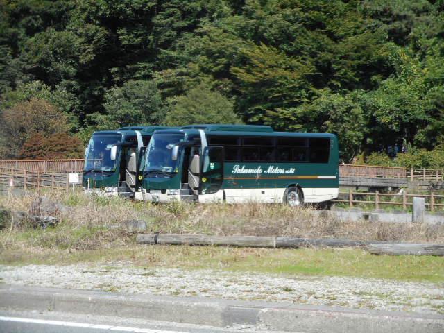 大型バス (1)