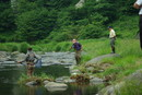 鮎の試し釣り、2010