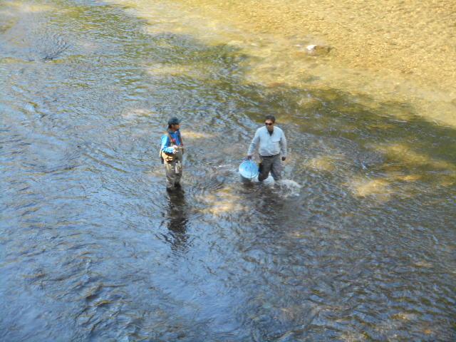 釣り人前放流
