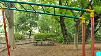 石神井公園 6