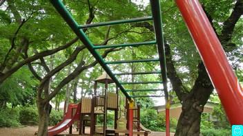石神井公園 7