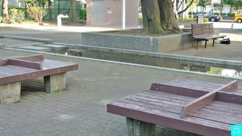 追浜公園 3
