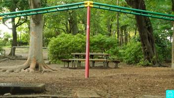 石神井公園 8
