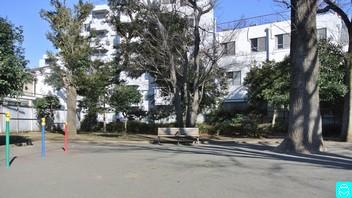 世田谷丸山公園 6