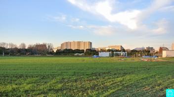 東大農場 2