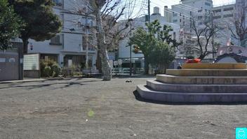 世田谷丸山公園 7